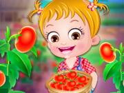 Play Baby Hazel Tomato Farming
