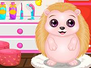 Play Baby Hedgehog Salon