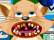 Play Cat Dental Care