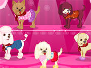 Play Celebrity Dog Dressup