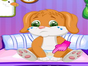 Play Cute Puppy Caring