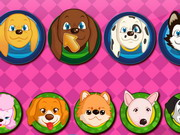 Play Dog Grooming Salon