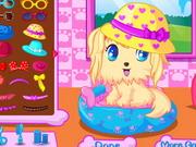 Play Doggy Beauty Salon