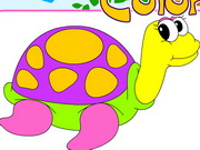 Play Happy Turtles Coloring