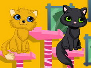 Play Kitty Beauty Spa