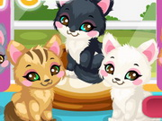 Play Kitty Care 2