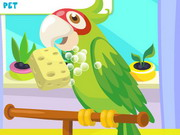 Play Parrot Care
