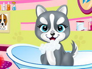 Play Pets Beauty Salon 2